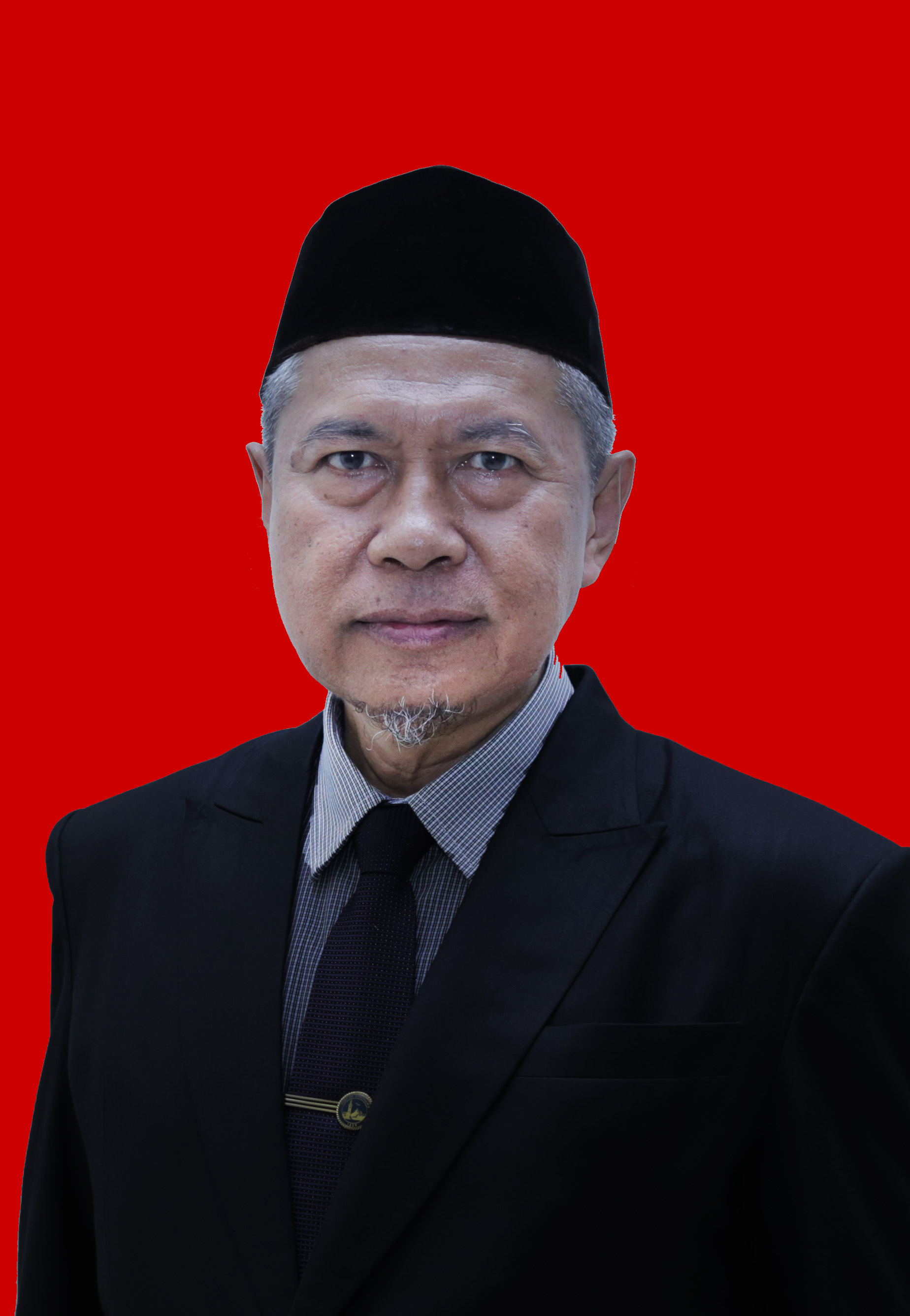 Prof. Dr. Ir. Wan Abbas Zakaria, M.S. NIP.196108261987021001